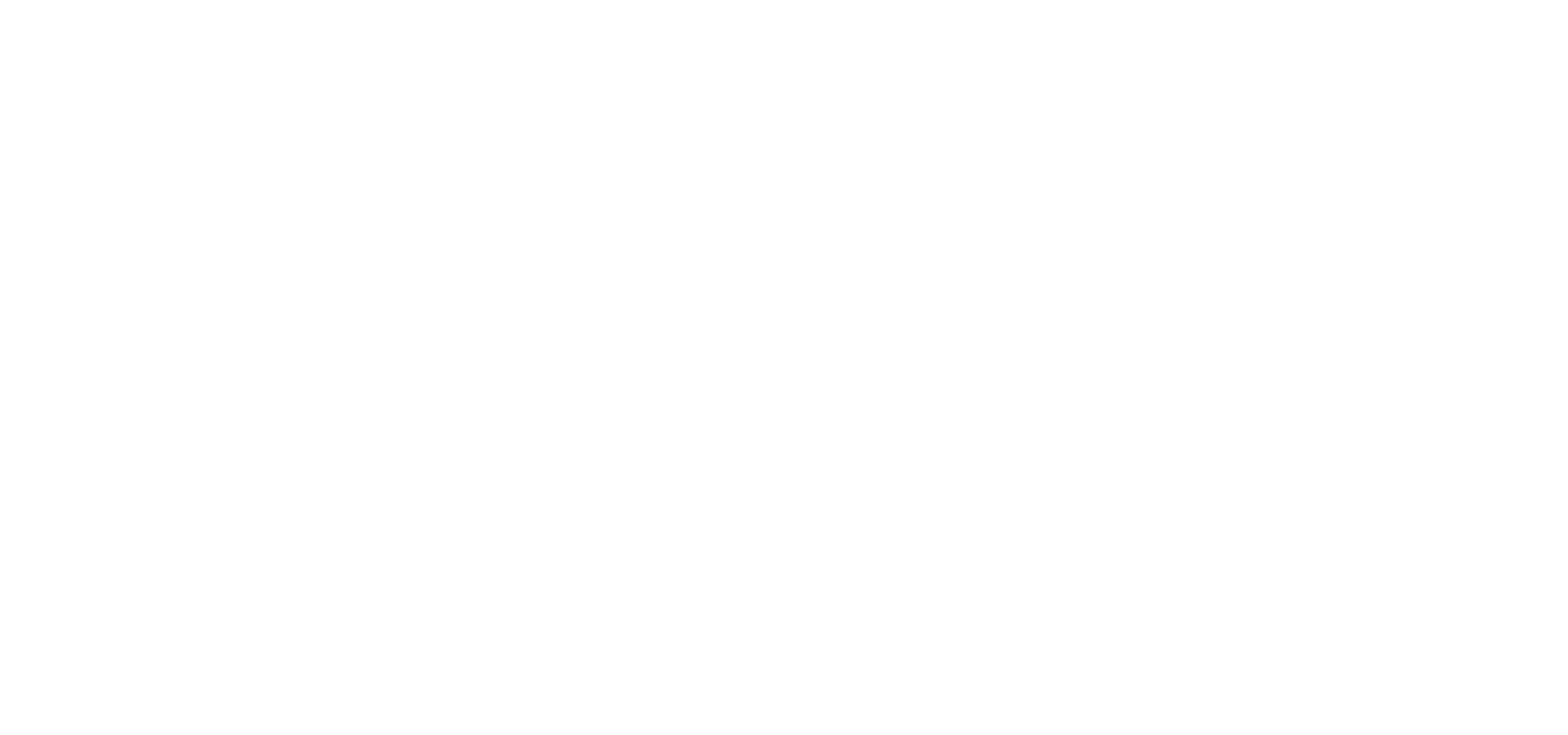 Gonzo Youth Theatre